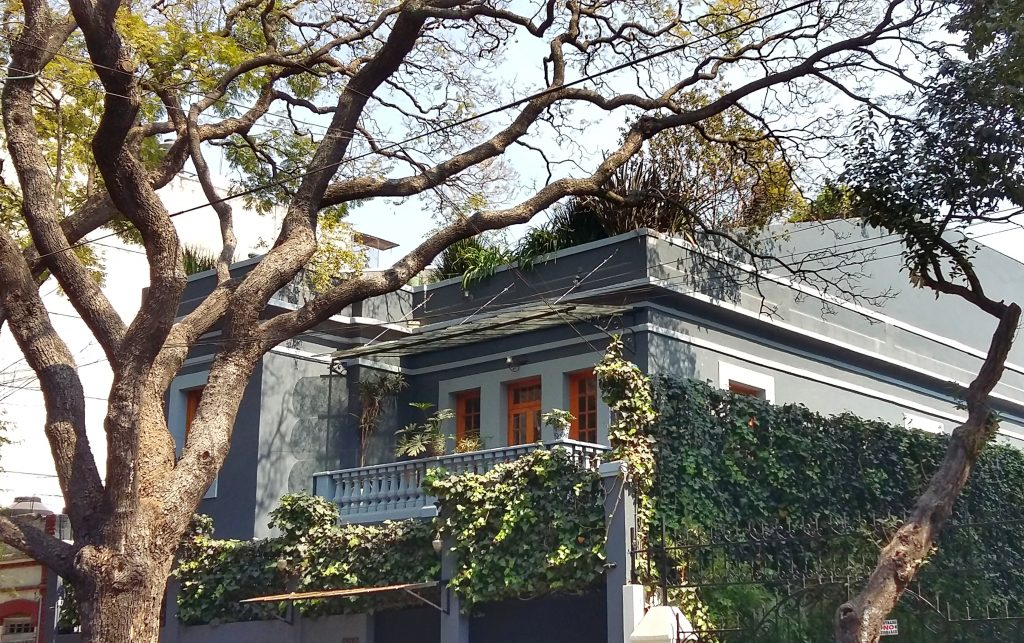 Casa Jacaranda: Where I found the Best Cooking Class in Mexico City!