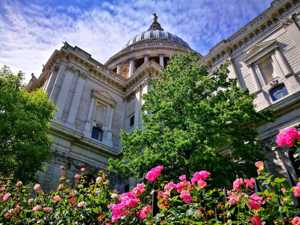 How Many Days in London - St Paul's Cathedral with Roses