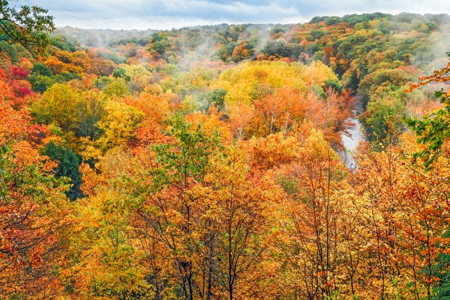 Fall foliage in Ohio - Cuyahoga Valley National Park
