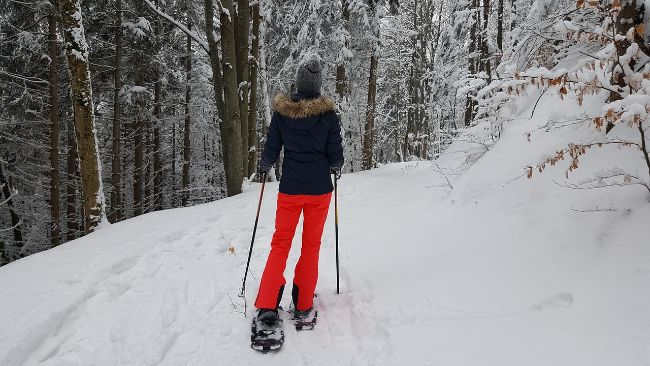 Woman with red trousers and blue fur lined jacket and snowshoes in the snow near some trees Snowshoeing is a great winter activity in Colorado Springs